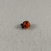 Ladybug Bead Orange