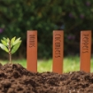 Picture of Vegetable Plant Stakes - Set of 6