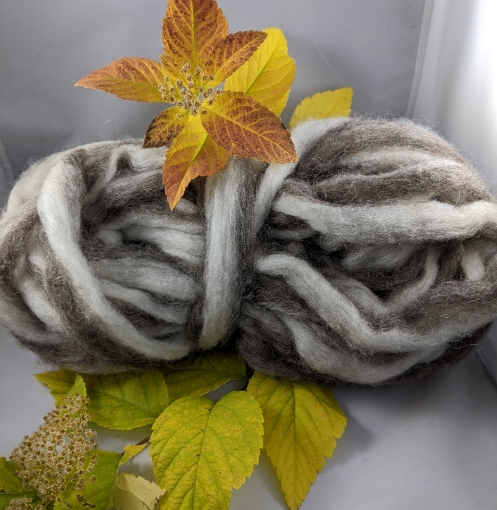 Picture of Gray and White Roving